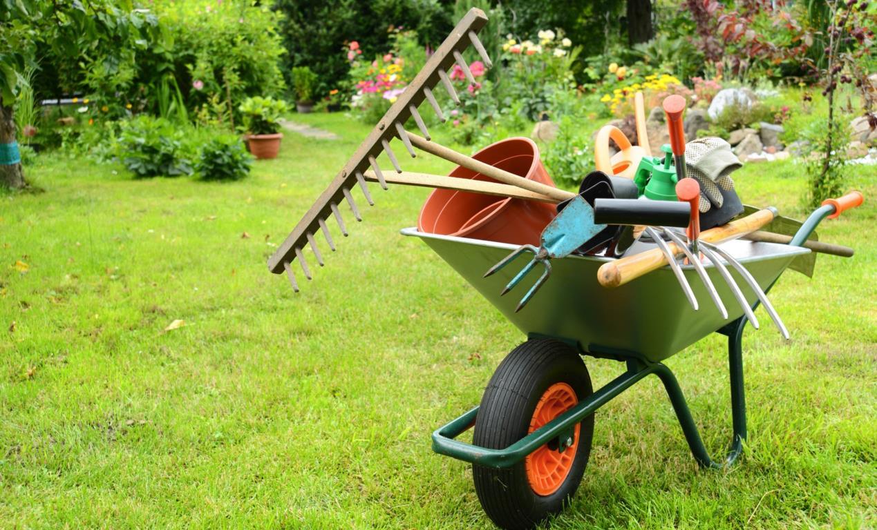 Tuinhulp woondiensten ontruiming for Tuin aanleggen nijmegen